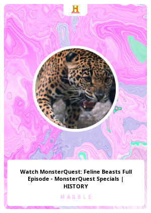 Watch MonsterQuest: Feline Beasts Full Episode - MonsterQuest Specials   HISTORY