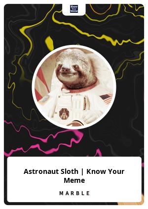 Astronaut Sloth | Know Your Meme